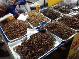 entomoculture